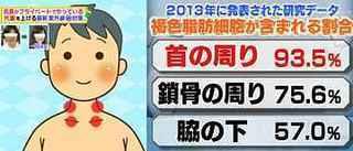 brown_adipocyte_neck.jpg